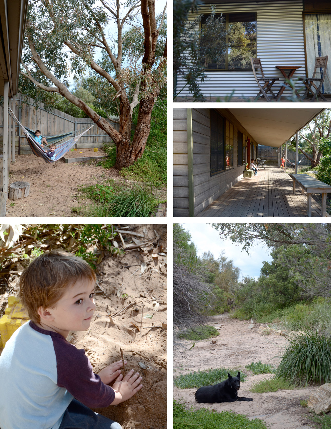 dune-backyard